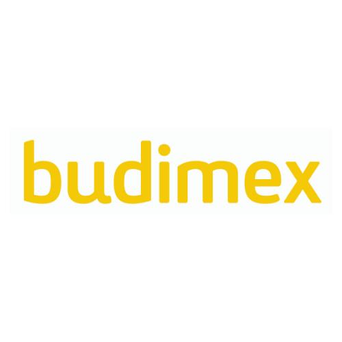 Logo Budimexu