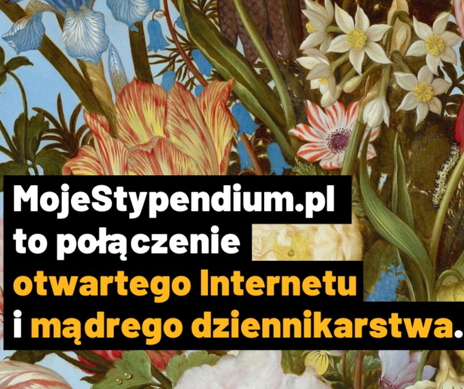 Lista ofert ze stypendiami na stronie MojeStypendium.pl
